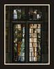 Window Reflection Abstract - U. of Michigan Law Quad