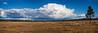 Panorama Cloudscape over Meadowlark Prairie, Eugene, Oregon
